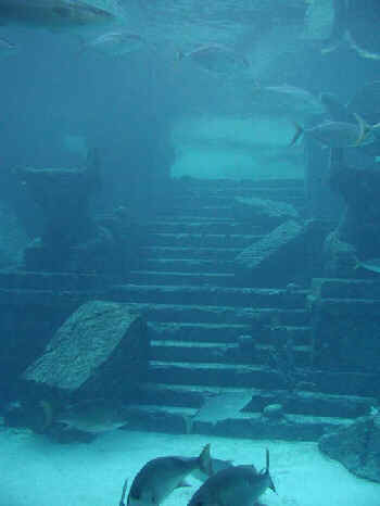 One of the MANY sunken ruins of the Ancient cities of Earth