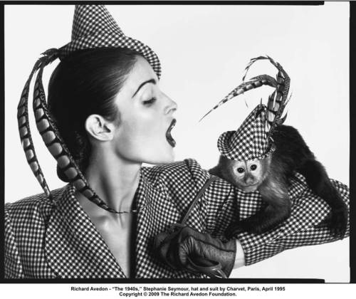 Avedon, Stephanie Seymour wearing Charvet
