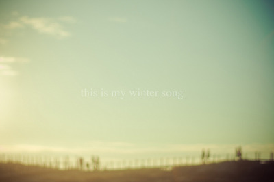 luminousphotography:  winter song (by Ana Luísa Pinto)