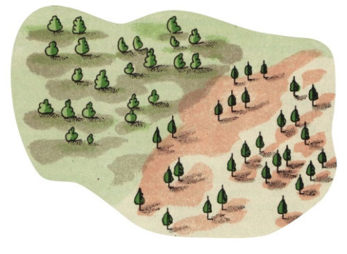 Trees from 18th-century Russian Maps  (from page 174 of John Krygier and Dennis Wood's second edition of Making Maps)