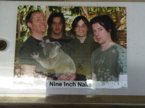 Haha NIN with a Koala Freese, Jeordie White, Alessandro Cortini, Aaron North