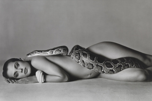 Avedon, Nastassja Kinski and the Serpent