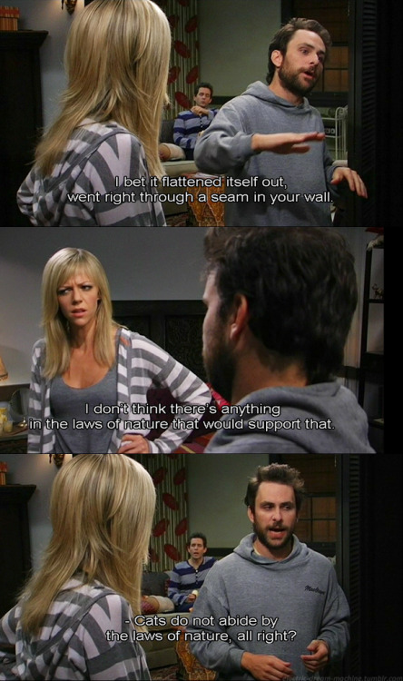 Always Sunny - Cats do not abide by the laws of nature, all right? - S5E9 - Mac and Dennis Break Up Follow Captured Captions