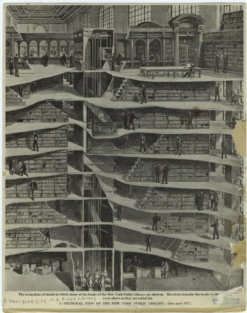 If you love me, you'll take me here. Amaze. nypl:  housingworksbookstore:  A sectional view of the New York Public Library. (1911) (via NYPL Digital Gallery | Detail ID 805999)  We love this image, showing how the three public floors of the library are supported by the seven stories of stacks within. Well… originally. What most people don't know is that our stacks now extend all the way underneath Bryant Park. We don't give tours of the stacks that often, but if you want to see more, you can check out this fantastic online tour (by way of blog post) by Kathie Coblentz, Rare Materials Cataloger for the library showing the inside look and the history of the stacks that make up the Stephen A. Schwarzman Building.