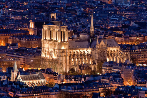 "When I studied French, I knew the word for ""flying buttresses."" I would not have been able to ask my way to the train station. allthingseurope:  Notre-Dame by Night - Paris, France (by Thomas Leplus)"
