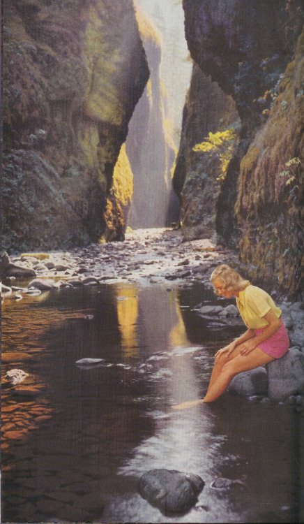 Oneonta Gorge, Oregan, 1952