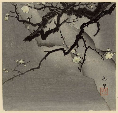 dressrehearsalrag:  Hirose Yoshikuni, Plum tree at night, 20th century