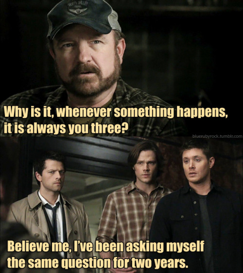 destiel-is-music:  girlblowingbubbles:  wings-and-pie:  heysammy:  cardiologie:  kasienkanikki:  bluerubyrock:  Harry Potter/Supernatural  #Sam is Harry because he's the ~CHOSEN ONE~ and his mother died in his nursery trying to protect him from the Big Bad when he was just a little baby and it was also right around Halloween when this happened. He's psychically linked to said Big Bad that killed his mother and constantly worried that there is a darkness inside of him that will make him turn out evil but eventually he realizes that it is his choices far more than his abilities that define who he really is. #Also the hair. #Dean is Ron because he is the best friend that is constantly eating and who makes everything fun and jokes around a lot but in reality he's really strong and smart and important himself. His friendship with the CHOSEN ONE is the most important friendship because they mean so much to each other and would do anything for each other. Ultimately he plays a super important role in saving the world too. #Castiel is Hermione because he's the brains of this operation but he's so much more than that— he's tough as nails and can handle just about anything. Also the fun best friend constantly teases him for being a 'nerd' and said teasing is just covering up a seriously intense crush.  #its the same #im crying #the impala is hedwig  Excuse me while I burst out in tears of happiness because I have just now realised that my childhood DIDN'T end, it just evolved into something new.   crowley is snape. bobby is dumbledore.  #THE IMPALA IS HEDWIG /dieing of laughter  I AM CRYING, I HAVE THE CHILLS- BOTH OF PURE FUCKING HAPPINESS!!!!!!!!