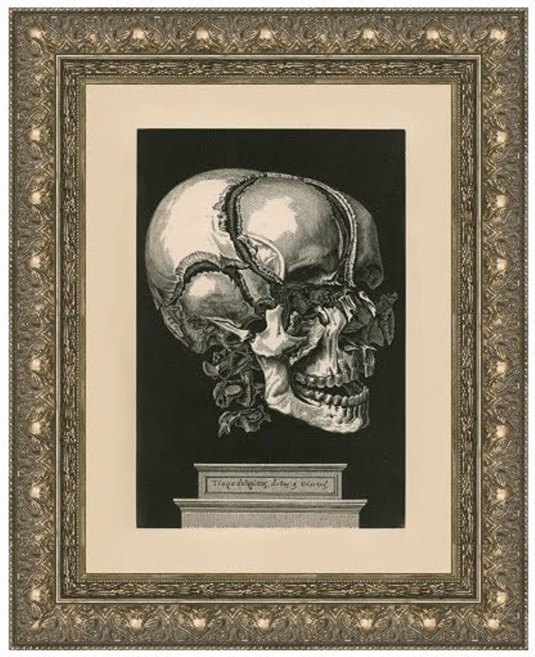 Artist Unknown, Human Skull Exploded View, 1700s