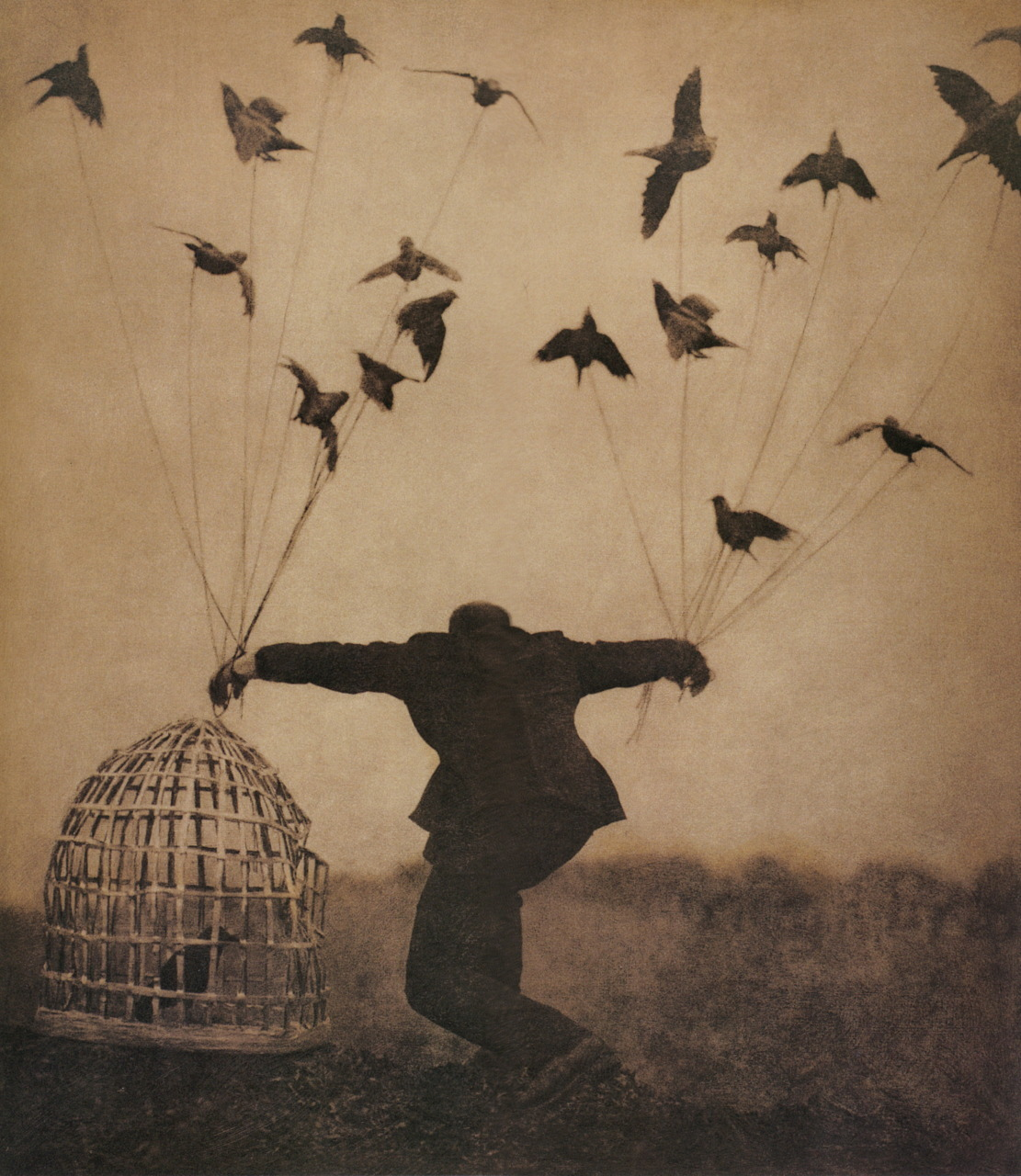 liquidnight:  Robert and Shana Parkeharrison Flying Lesson, 1993-1994 From The Architect's Brother
