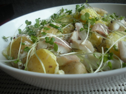 Warm new potato salad with smoked eel and creamed horseradish This salad presents a perfect pairing of buttery yellow new potatoes and rich and delicate smoked eel, bound together by a creamy yet bright and sharp dressing.  Bring some new potatoes (300g) to a boil and cook till done (once they are easily pierced with a fork). Keep warm till you are ready to assemble the salad. In the meantime, in a small bowl mix together 1 tbs creamed horseradish, 1 tbs light creme fraiche, 2 tsp white vinegar, 1 tbs olive oil, 1tbs each finely chopped chives and parsley, and some sea salt and pepper. Slice up the new potatoes and place in a serving bowl. Fold in the salad dressing. Drape the potatoes with bite-sized pieces of smoked eel (130g) and then sprinkle generously with salad cress. Serves 3 as a starter or 2 as light lunch. You may also be interested in: GRILLED SARDINES ON RYE TOAST >