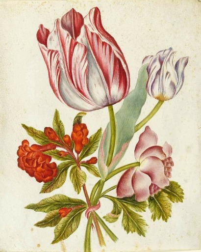 Unknown (Italian) Flowers Tied with a Ribbon 1750