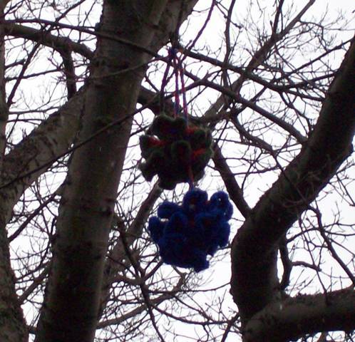 Hyperbolic bolas Tangled beautifully in a tree on campus