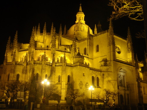 Segovia Cathedral at night. Segovia, Spain.