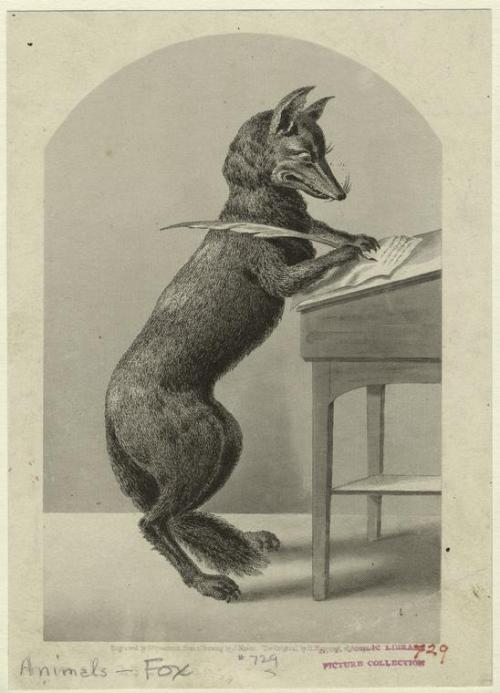[Fox writing with a quill pen.] (1852)by J. Mason.  allegorie della scrittura (vía marsiouxpial)