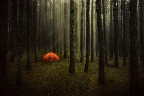 romantic camping :) bokeholic:  By Christian Schmidt