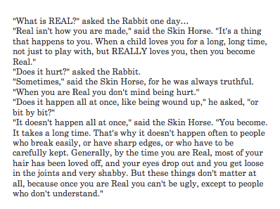 The Velveteen Rabbit =]