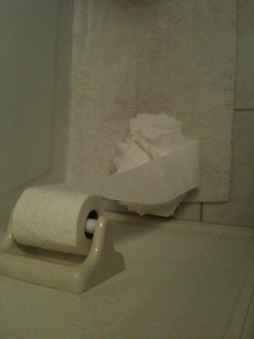 Fucking cat got crazy with the toilet paper.
