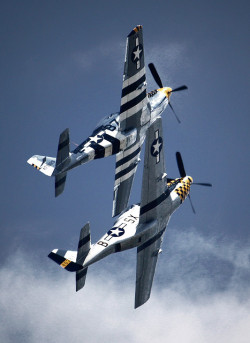 youlikeairplanestoo:  Two P-51 Mustangs fly in formation during a demonstration at the 2009 Rhode Island National Guard Open House and Airshow. Great shot by Matt Hintsa. Full version here.
