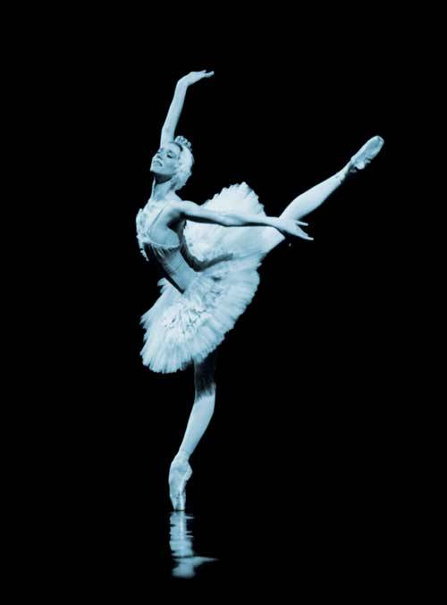 Perfect feet, perfect body, sylvie Guillem, swan Lake, Black swan