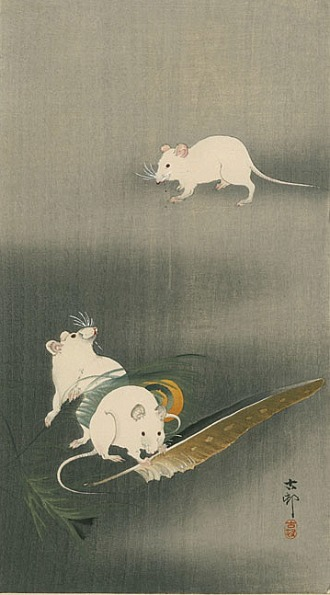 Ohara Koson Three White Mice 1900