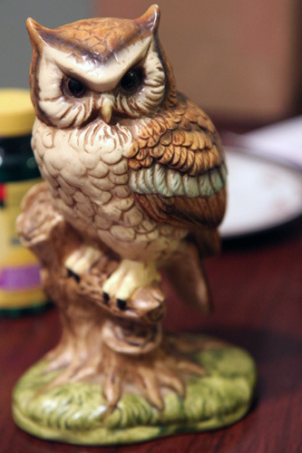ananimal:  And naturally I found an owl at Goodwill :3