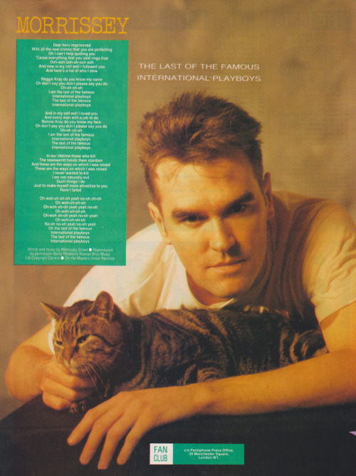 Morrissey with a cat, does life get any better? #MozMonday forever.