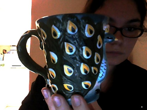 My peacock mug from Stephanie for Christmas! I'd been wanting this mug for some time, as you can see. She didn't see that blog though, so it was all by chance! Me and my girl are psychically linked!
