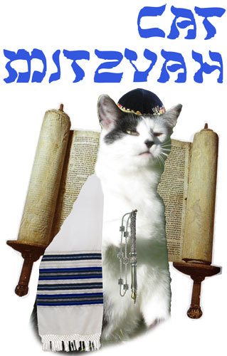 This. is. gangsta. tshirtmaker:  Cat Mitzvah Tshirt. A celebration of a cat's coming of age at age 13. Which would be like 90 in cat years Bubbe