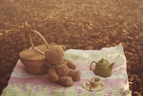 Tea time with Teddy Bear :)