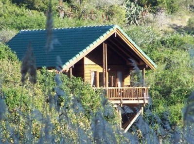 uHAMBI PICK TO EXPLORE    Thunzi Bush Lodge, Port Elizabeth