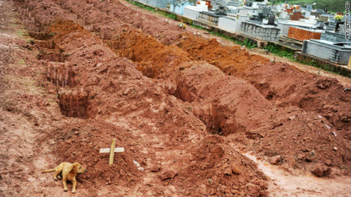 littleorphanammo:   Leao, a medium-sized brown mutt,  lies next to the grave of her owner, Cristina Maria Cesario Santana, who died in the catastrophic landslides caused by heavy rain.  This AFP/Getty picture was taken on Saturday, the second consecutive day that the dog refused to leave the woman's grave at the cemetery in Teresopolis, near Rio de Janiero.  CNN  awful