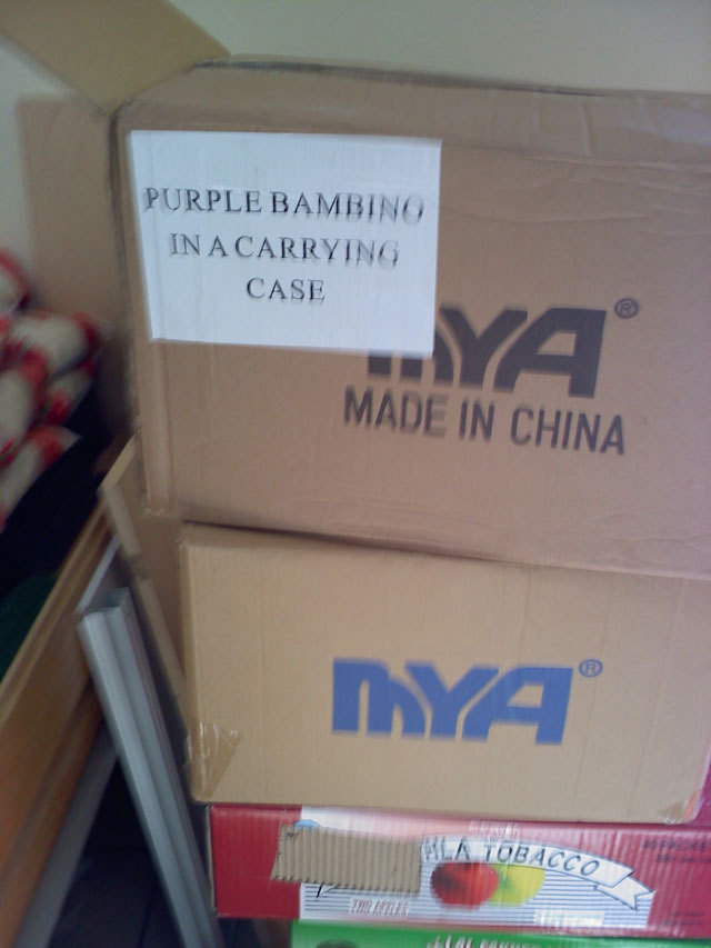 purple bambino in a carrying case (oasis market)
