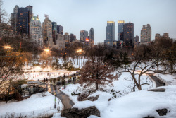 newyorkcityfeelings:  Central park under the snow