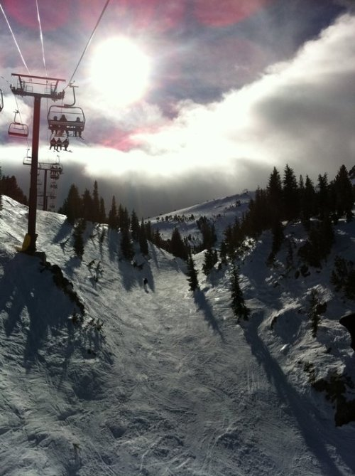 Mammoth Mountain on MLK weekend.   Grossssss