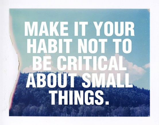 "rosemariesays:  ""Make it your habit not to be critical about small things."""