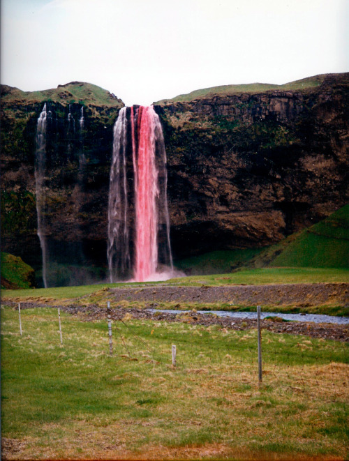You have all seen pictures of Seljalandsfoss But you probably have never seen it pink. This was done by a few friends who will remain anonymous a couple of decades ago. They through in 2 liters of red food coloring to get this effect. No Photoshop. Photo by Matti.