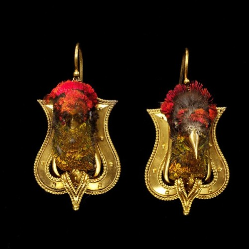 yeoldefashion:  These 1865 earrings feature actual hummingbird heads with gold-covered beaks.