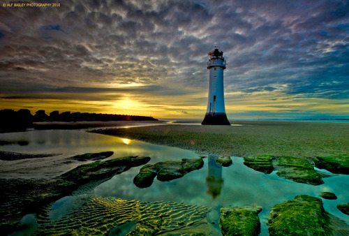 Perch Rock Pools, by Alf Bailey