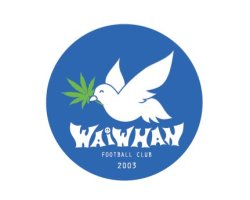 Waiwhan Football Club Logo and Identity Design