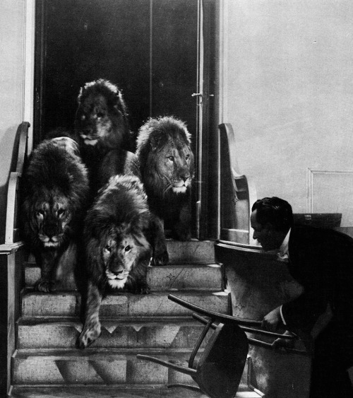 Harry Piel and a few uninvited guests in Panik (1928, dir. Harry Piel)