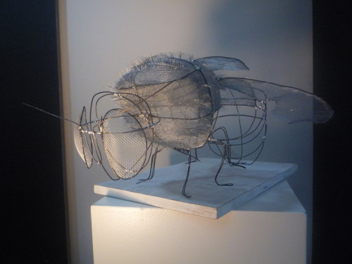 Buzz Buzz, Wire Sculpture, 2010.