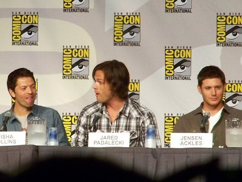 i-wuv-virgins:  Misha: HERP Jared: DERP Jensen: FLAWLESS GOD