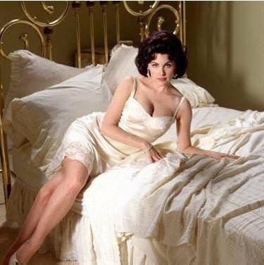 Sherrilyn Fenn as Elizabeth Taylor