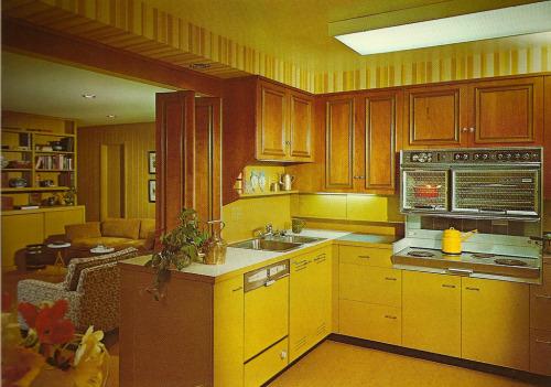 1970s Interior Decor