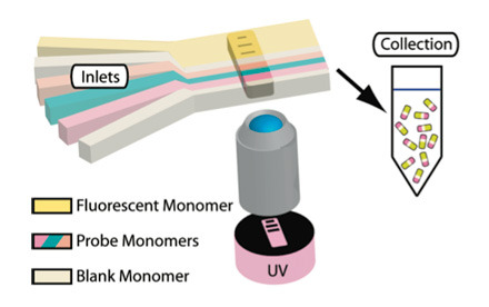 Hydrogel Barcodes Detect Disease Proteins