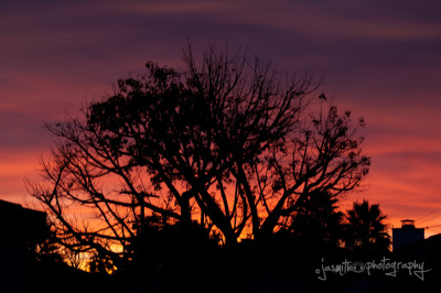Neighborhood in Los Angeles… The Red Sunset…