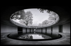 "lushlight:  ""The Oval' Benesse Arts Museum-Naoshima: Tadao Ando via telstar"