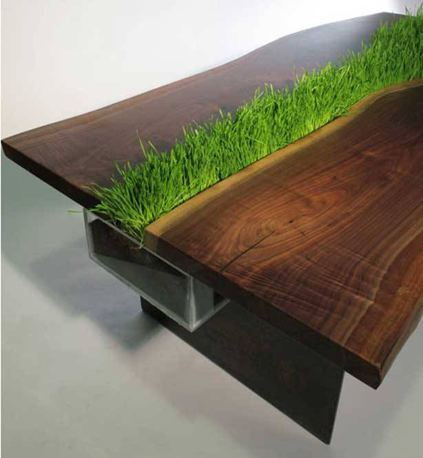 Reclaimed Walnut Table Grows Grass