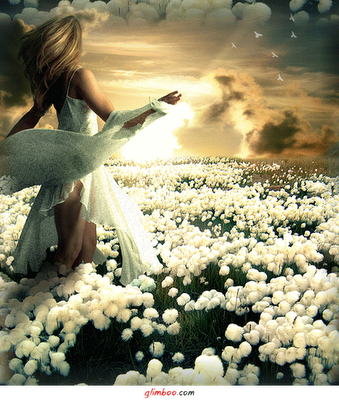 Derrame flores por onde passar porque voltarás,ao mesmo lugar.